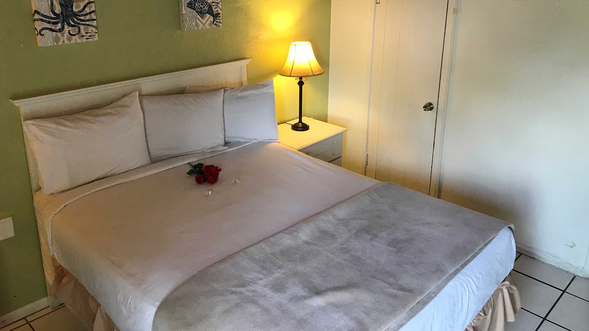 Island Breeze Inn Single Queen Bed